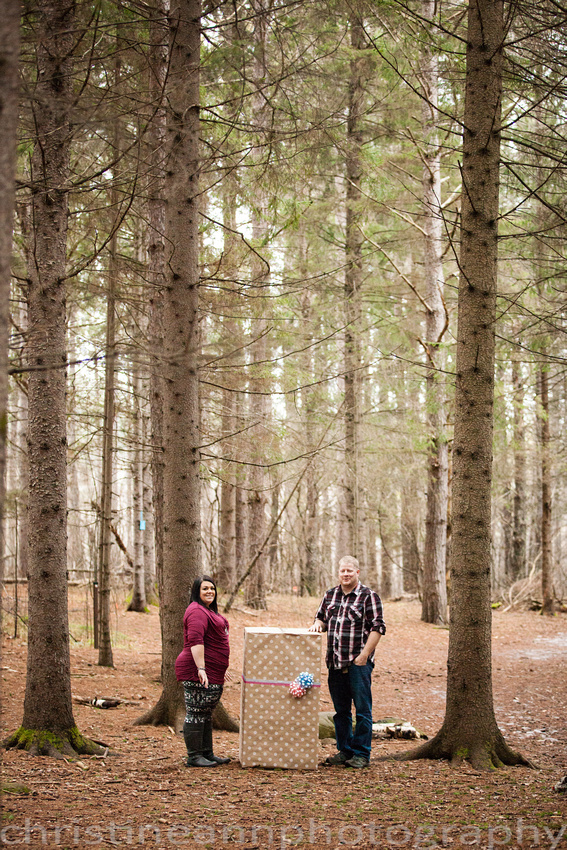 couples gender sex reveal photographs in the trees with balloons duluth mn