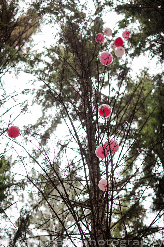 Couples maternity gender reveal balloons in the trees at hartley  nature center Duluth MN photographer