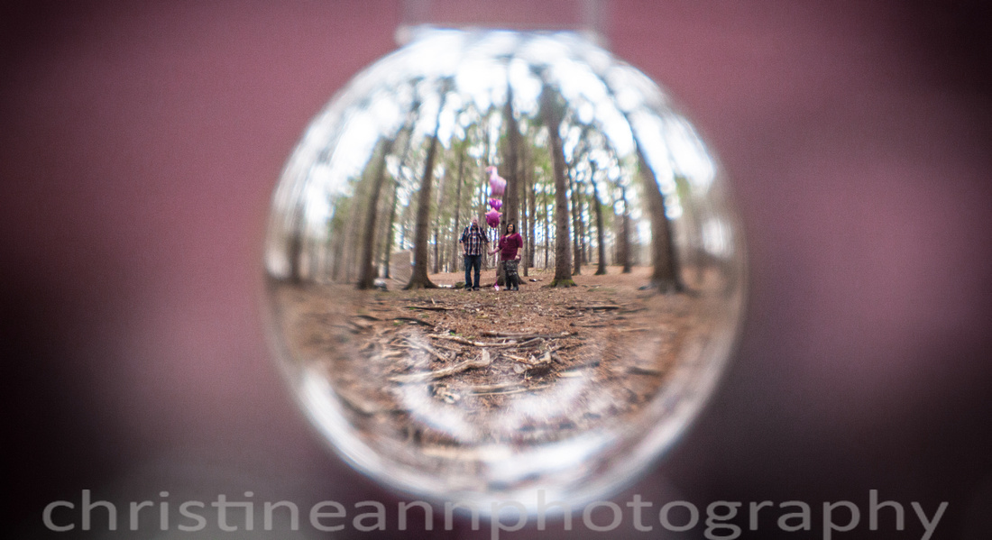 gender sex reveal in crystal ball duluth mn photography