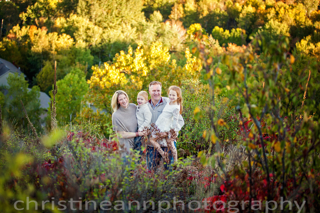Family of four with dog at Hawks Ridge overlook in Duluth MN by waterfall and on trails.